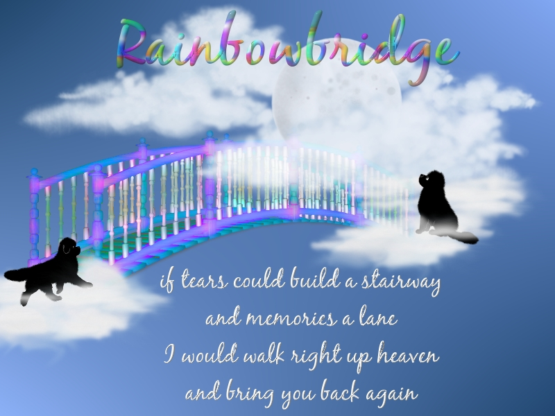 rainbowbridge1
